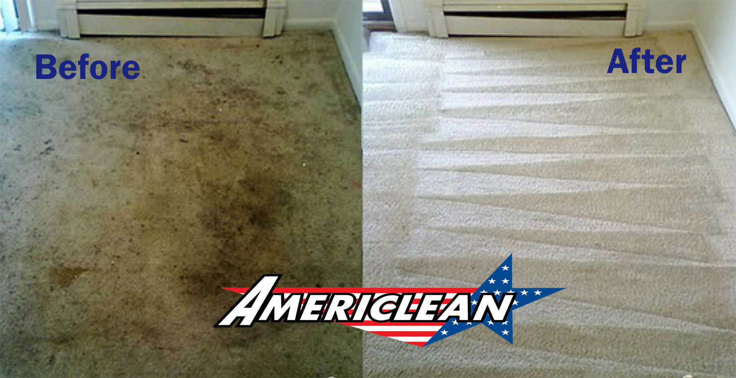 Carpet Cleaning Cedar Rapids from Americlean, image showing dirty and freshly cleaned carpet